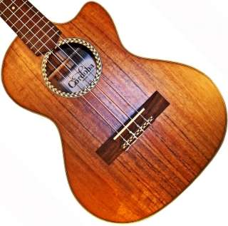 Tenor Acoustic / Electric Ukulele Solid Koa Top & Bottom & case